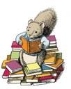 Kids - Squirrel