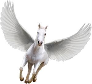 Teens - Pegasus